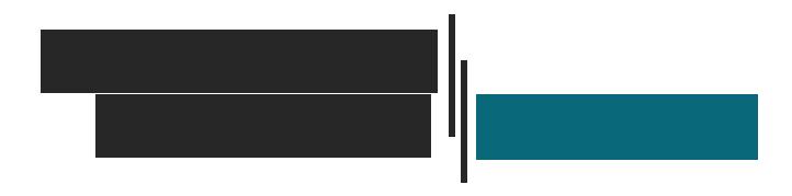 nsaen-logo_blue2