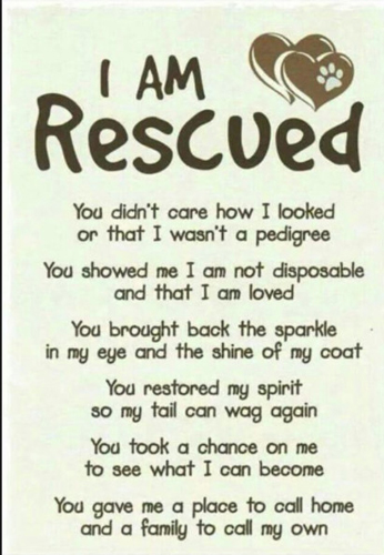 i-am-rescued-poster