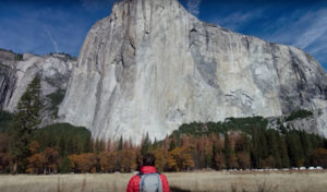 Free Solo — Movie Review