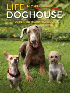 doghouse-1